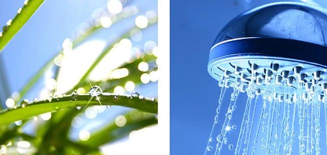 trinkwasserhygiene mit Zinnenlauf